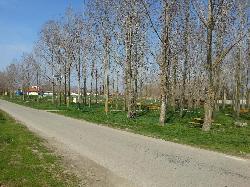 Bácsbokodban a szabadidő park térvilágítását UNK-MONO-8W-2011 napelemes kandeláberek elhelyezésével biztosították.